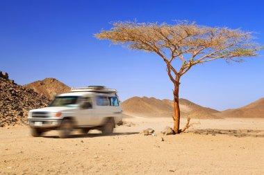 Jeep safari on the desert