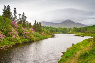 Scenery of Connemara mountains