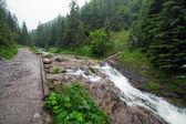 Rocky creek v Tatrách