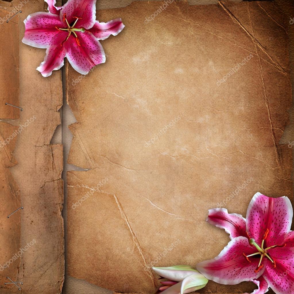 marco para fotos con flores de primavera sobre papel viejo álbum cov ...