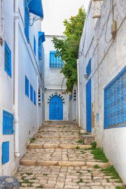 Side street at Sidi Bou Said, Tunis, Tunisia