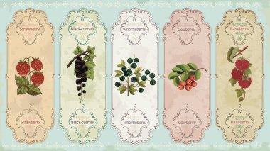 Vintage labels with berries