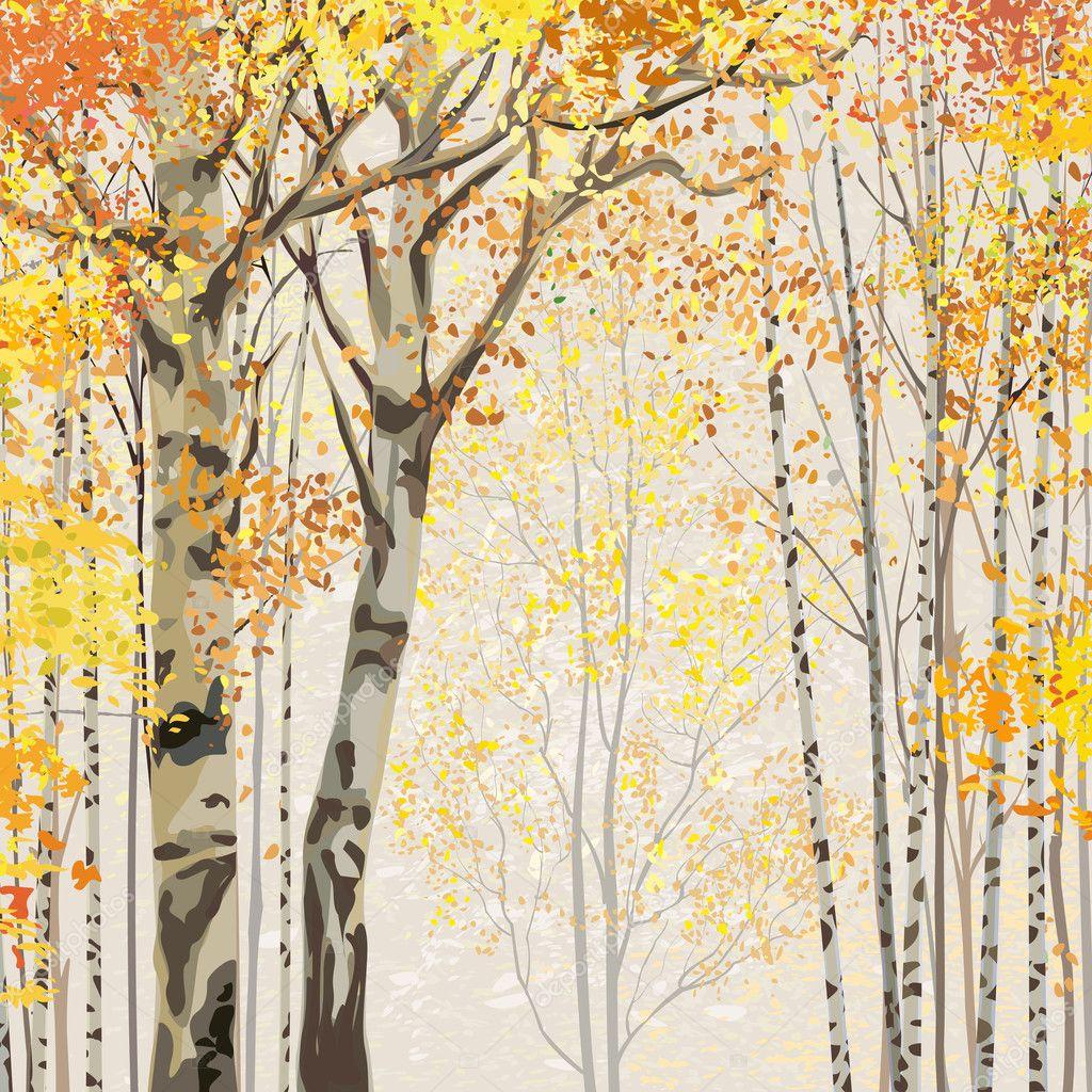 Birch grove in autumn time