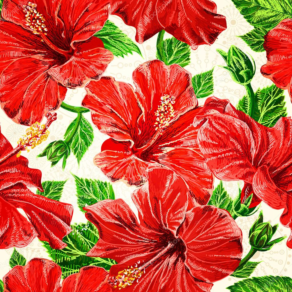 Vzor Bezesve Fhibiscus Kvetiny Rucni Kresleni Vektor Eps 10