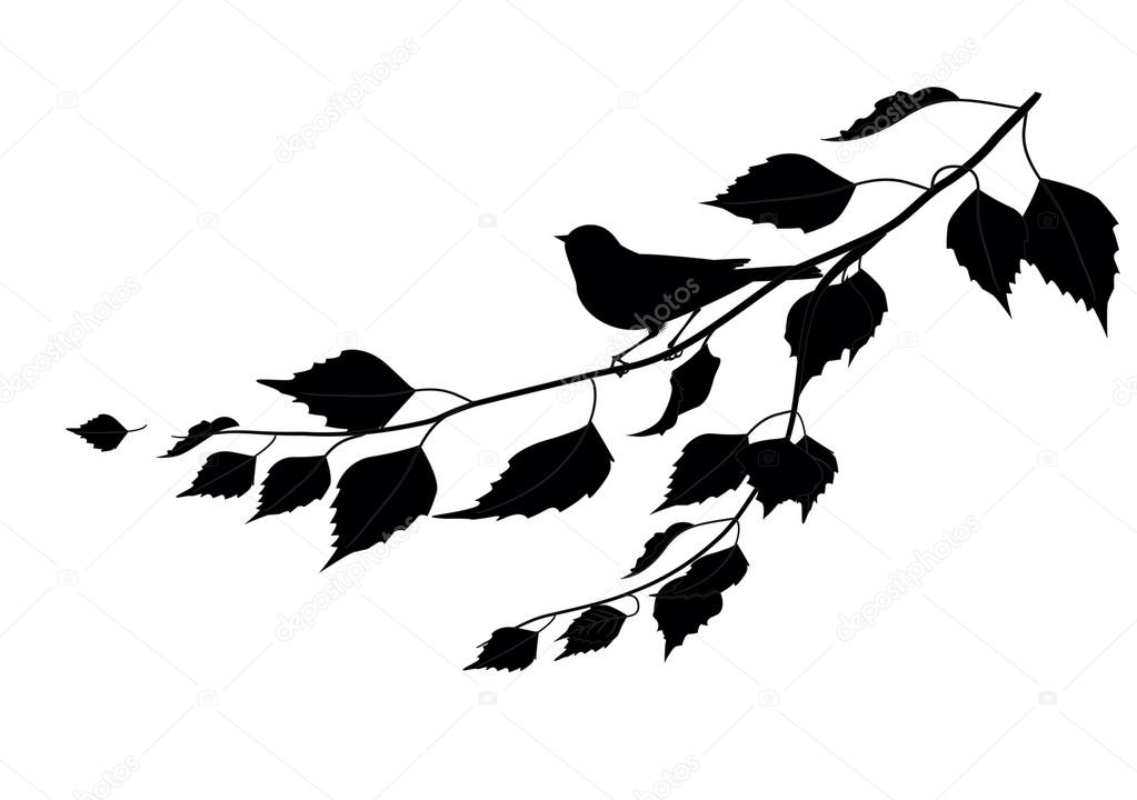 Bird on a branch. silhouette