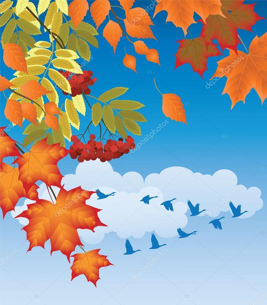 Истории пасхальной, рамки для текста картинки улетающих птиц осенью