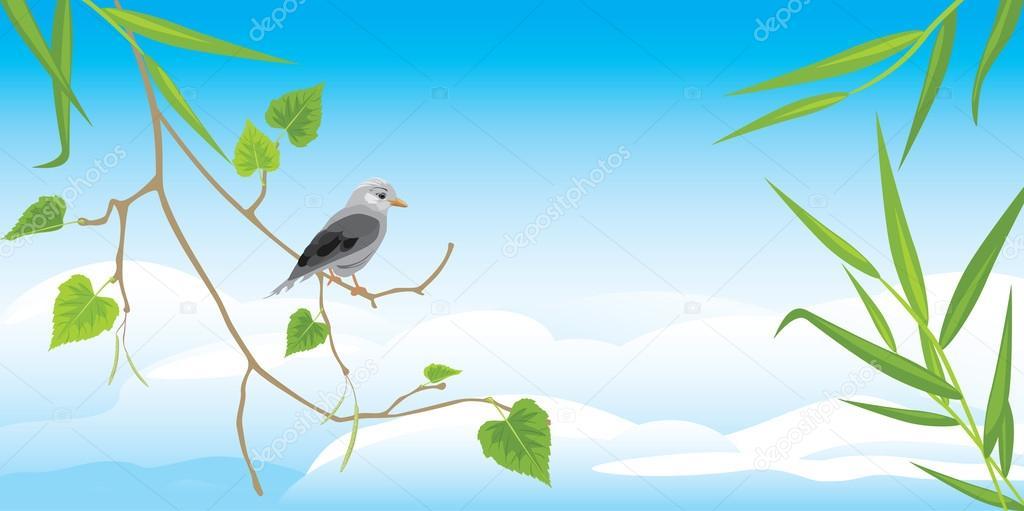 Sitting jay on the birch branch