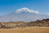 Fotografia Ararat