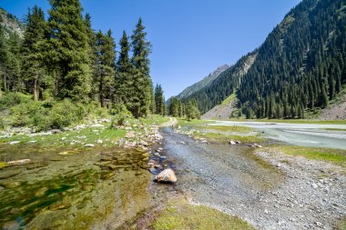 River on mountain road. Tien Shan, Kyrgyzstan