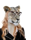 Photo Amusing Lioness Secretary Concept