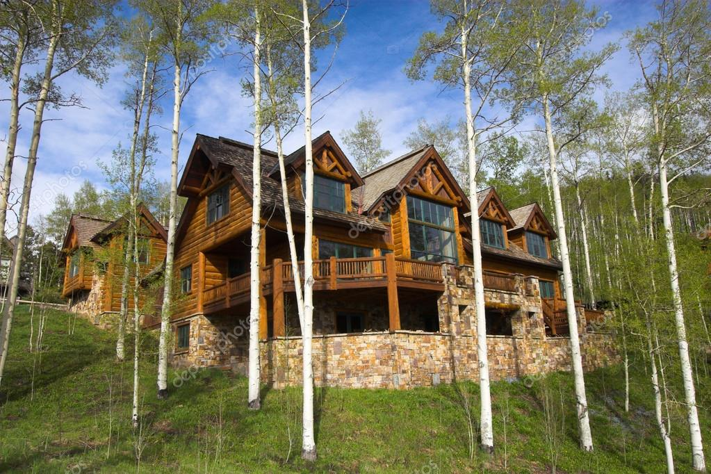 Mountain resort house