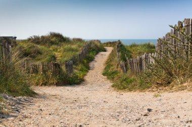 Sand footpath through dunes at the beach