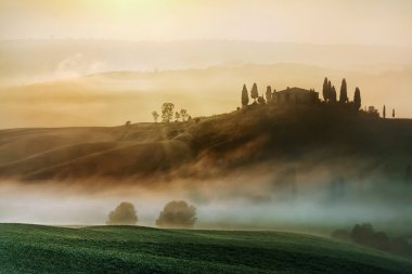 Early morning on countryside, San Quirico d Orcia, Tuscany, Italy stock vector