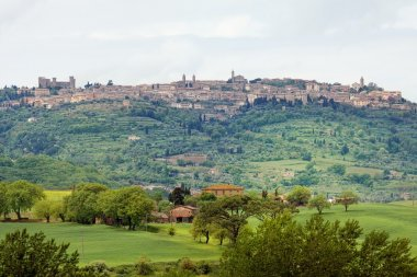 Typical landscape in the Val d'Orcia (Siena, Tuscany, Italy) at summer. The view to the town of Pienza stock vector