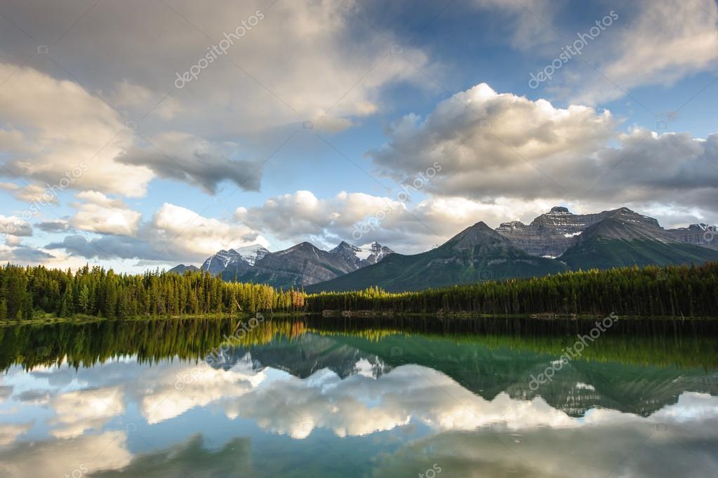 Herbert Lake panorama