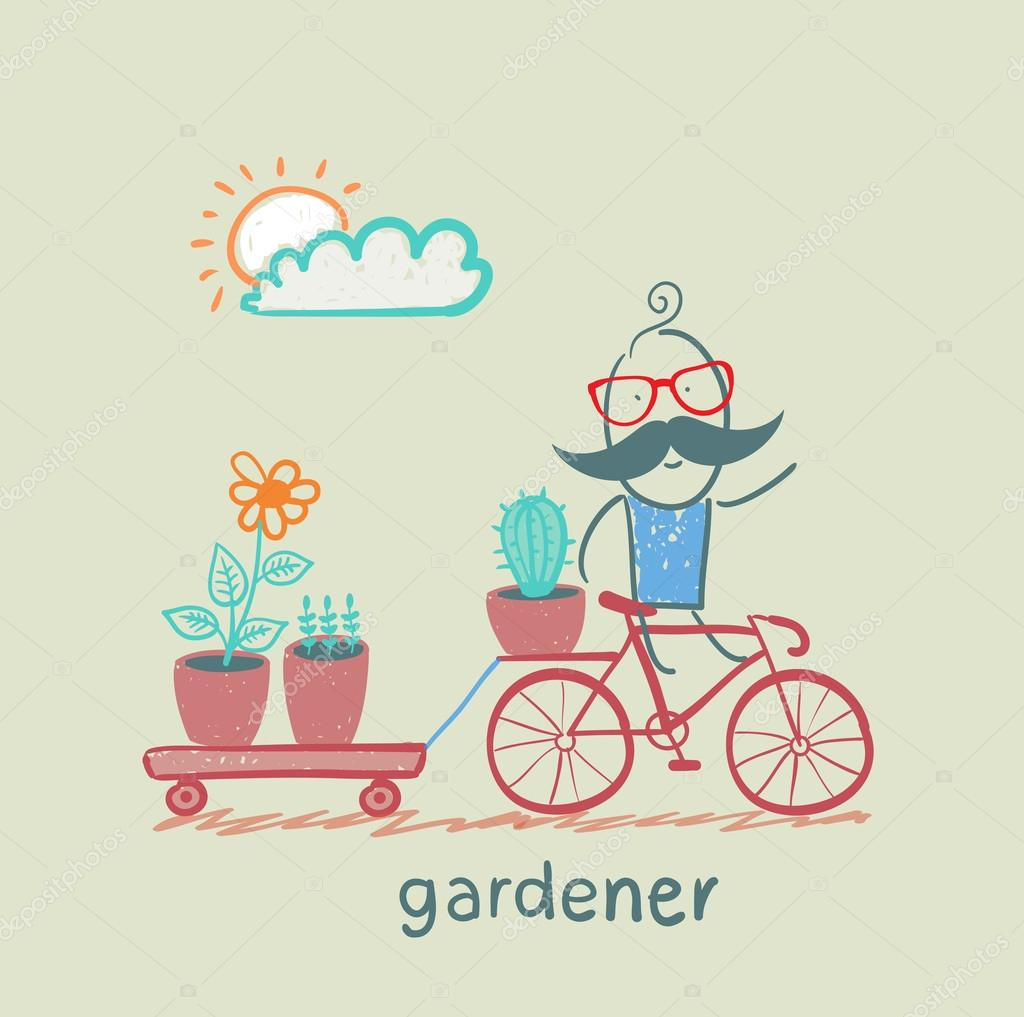 gardener carries a bicycle plant
