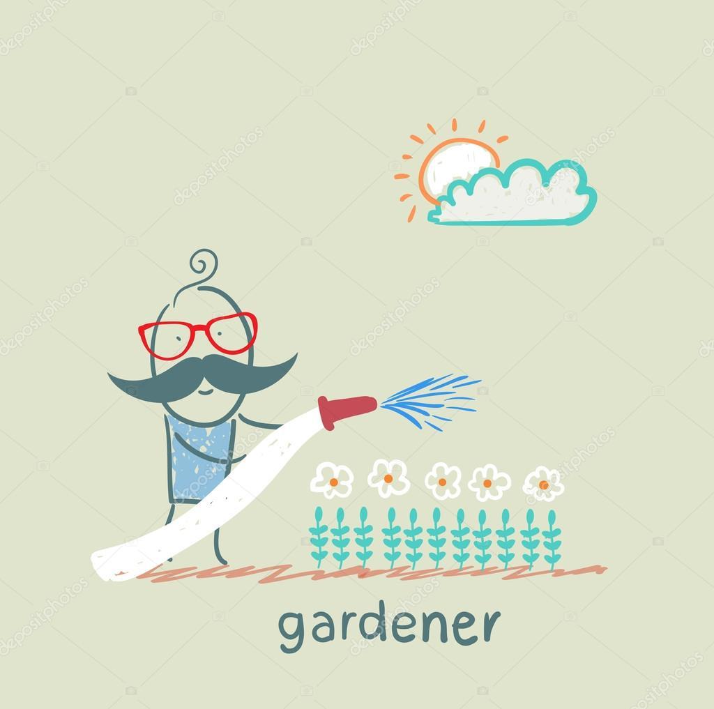 gardener waters the flowers