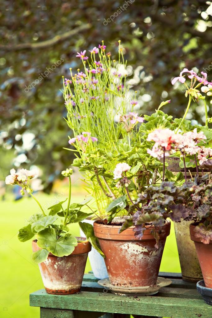 Rustic garden pots