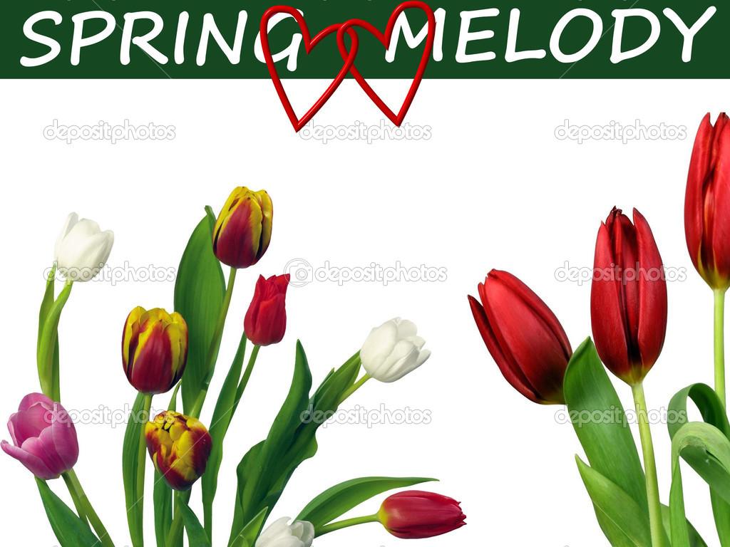 Мелодия весны скачать