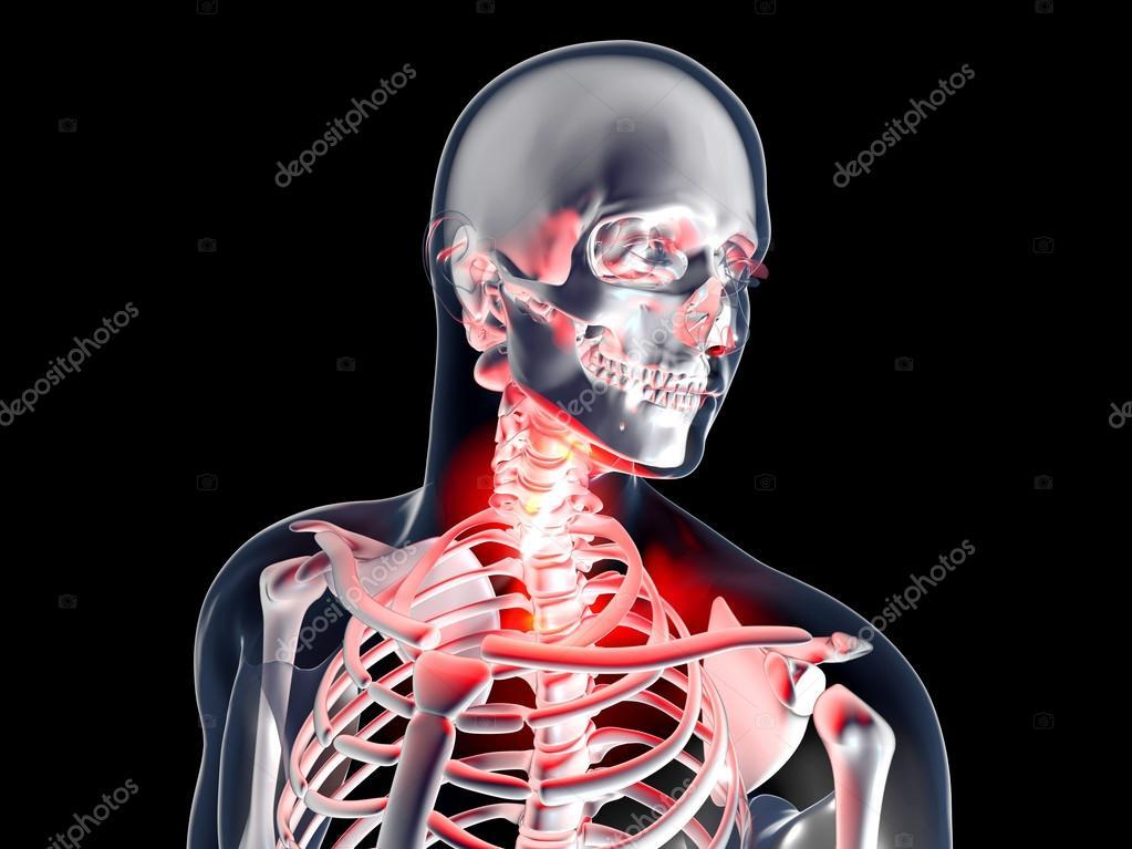 dolor de garganta - anatomía — Fotos de Stock © Spectral #43052187