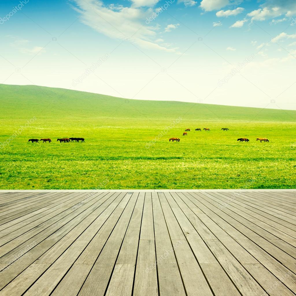 Wood flooring and grassland