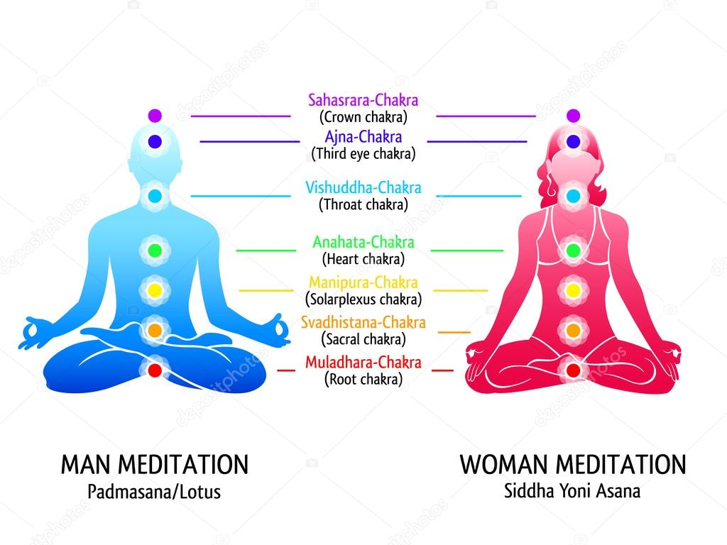 depositphotos_28730203 stock illustration yoga chakras diagram yoga chakras diagram stock vector © sahuad 28730203