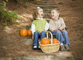Fotografie Brother and Sister Children Sitting on Wood Steps with Pumpkins