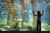 Fotografie junges Mädchen Aufstehen gegen große Beobachtung Aquarienscheibe