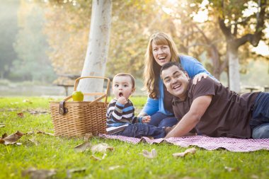 Happy Mixed Race Ethnic Family Having a Picnic In Park
