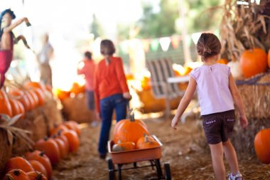 Cute Little Girls Pulling Their Pumpkins In A Wagon