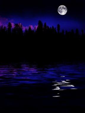 Forest Moonrise Reflection
