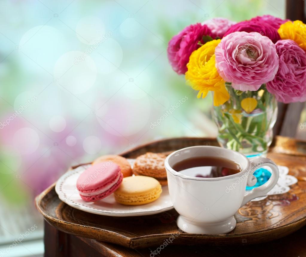 https://st.depositphotos.com/1007985/2713/i/950/depositphotos_27136987-stock-photo-cup-of-coffee.jpg