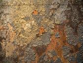 Fotografia pannello metallico arrugginito
