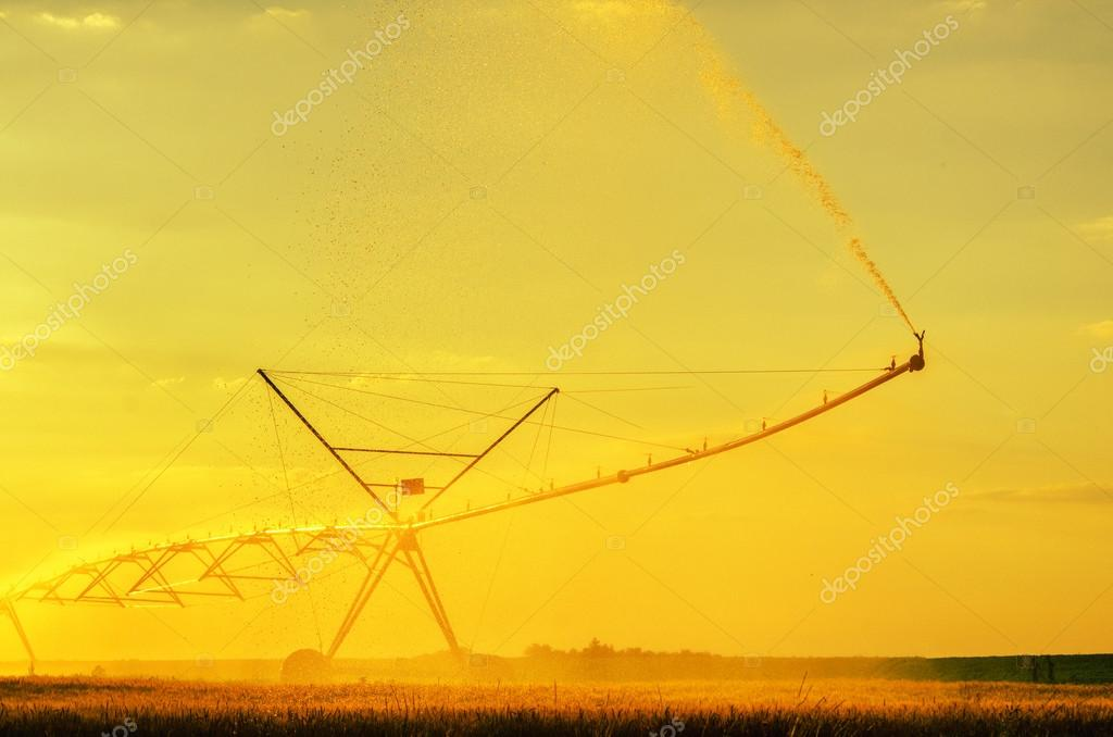 Irrigation system on the wheat field