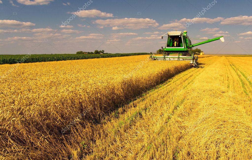 agriculture #hashtag
