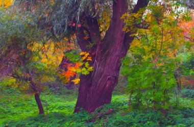 Landscape painting - deep forest