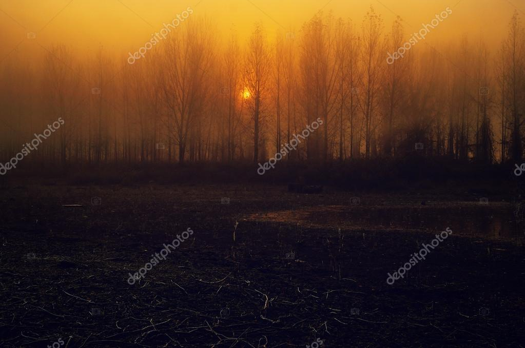 Spooky landscape at sunset