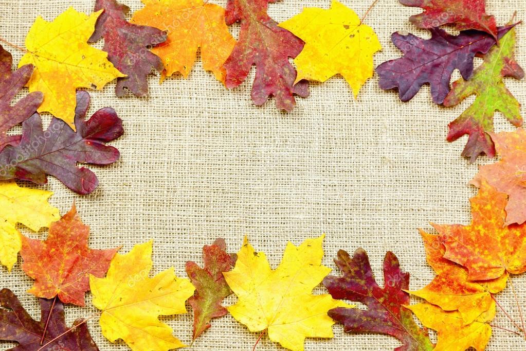 fall background stock photo alexeys 15636445