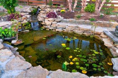 Decorative koi pond in a garden stock vector