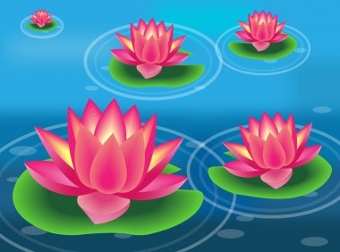 Vector illustration of water lilies and flowers