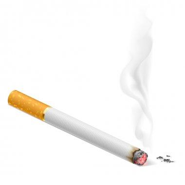 Cigarette burns. Illustration on white background.