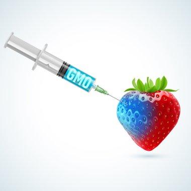 Strawberry with GMO
