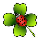 Photo  ladybug on clover