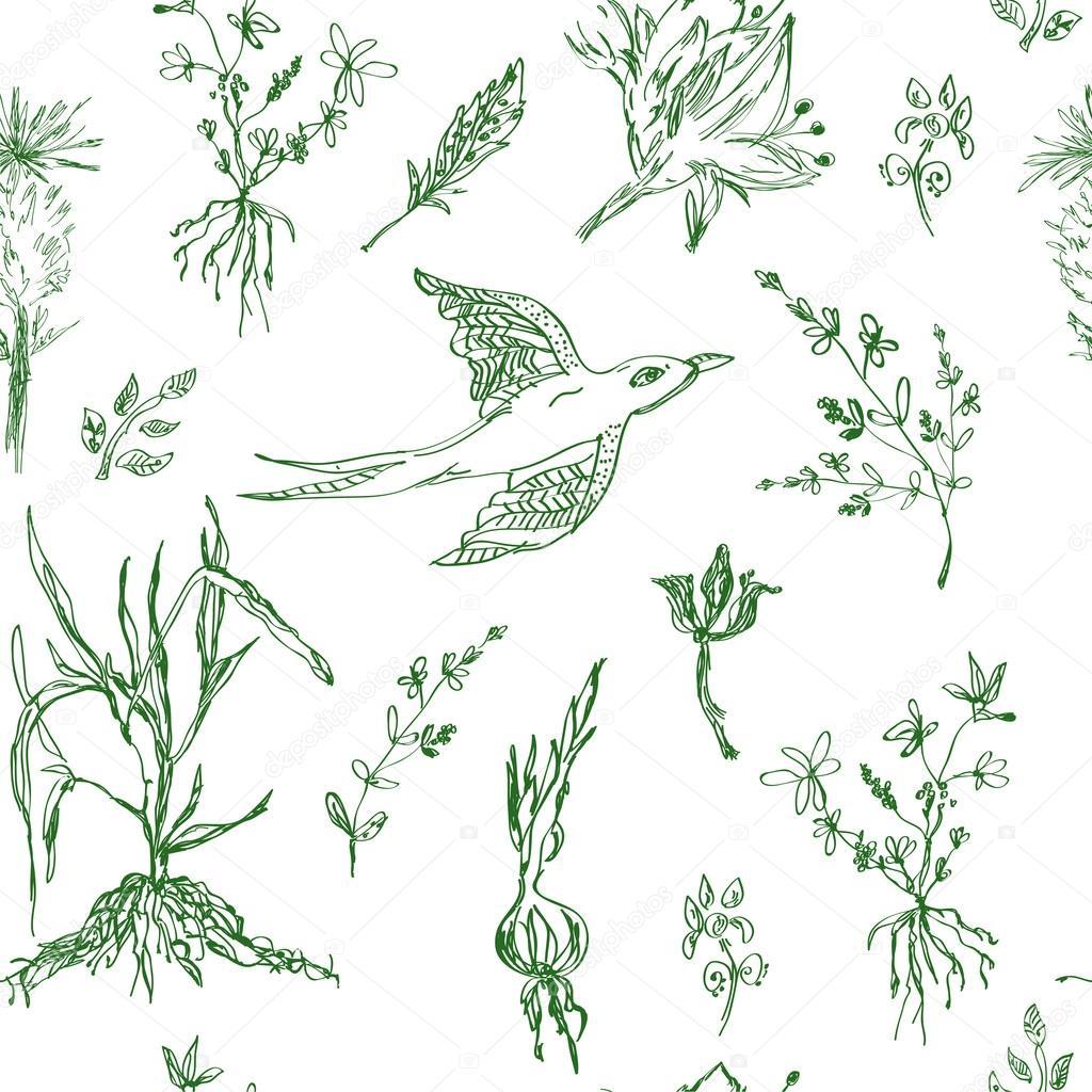 Garden flowers seamless pattern sketch