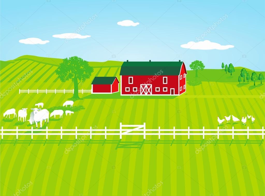Farm with sheep