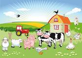 Fotografie karton hospodářská zvířata