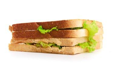 Fresh sandwich stock vector