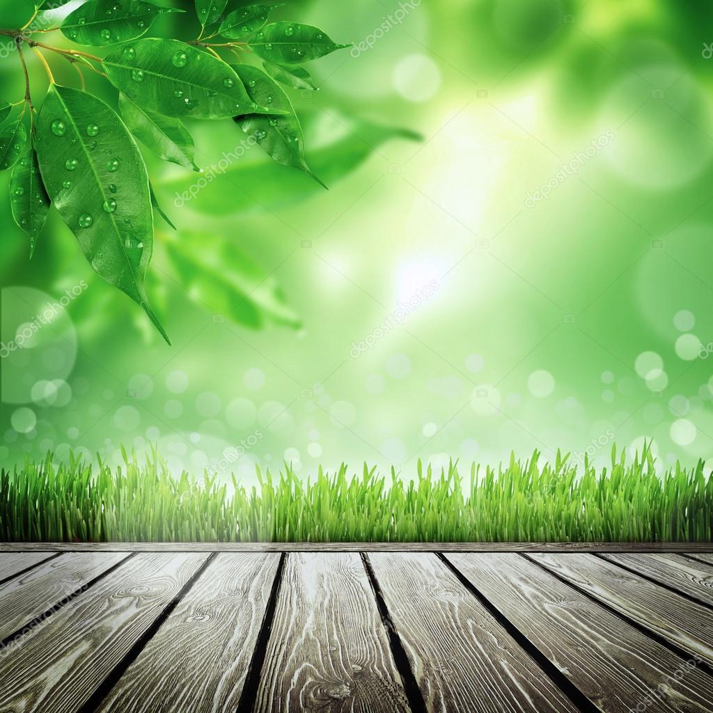 Sfondo natura primavera foto stock merznatalia 45897501 for Immagini natura hd