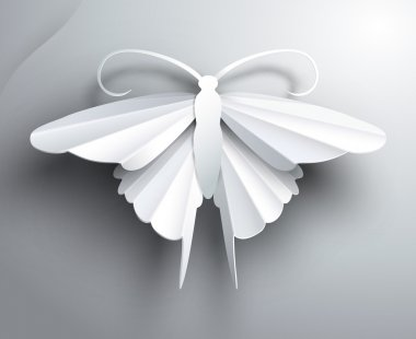 Beautiful white 3D paper butterfly.