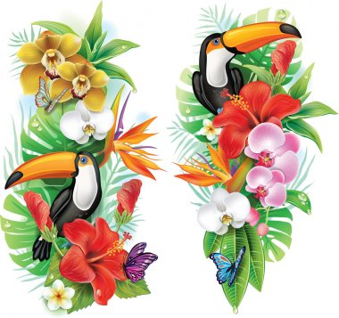 Tropical flowers, toucan and a butterflies stock vector